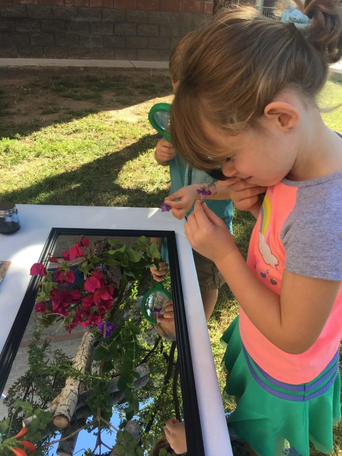 Alexa sniffs a flower from the array of natural materials from the provocation exploring art and the natural world.